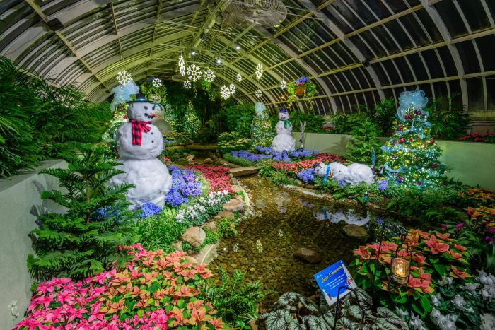 Winter Flower Show And Light Garden Days Of Snow And