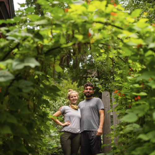Phipps Sustainable Garden Award Winners for 2020