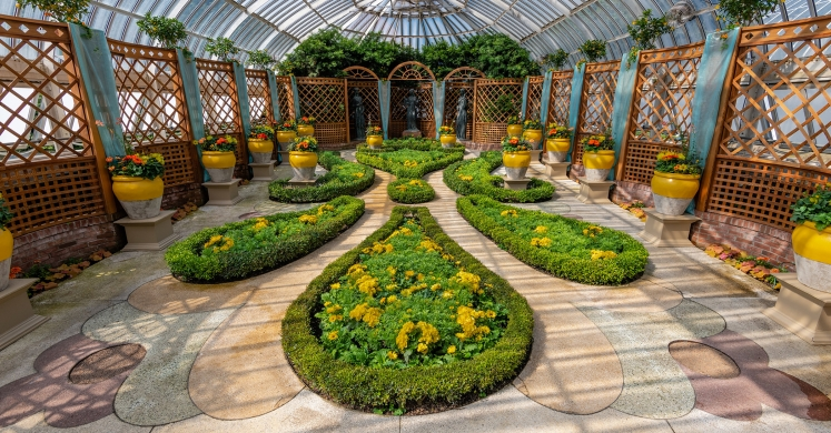 This Week at Phipps: June 17 – 23