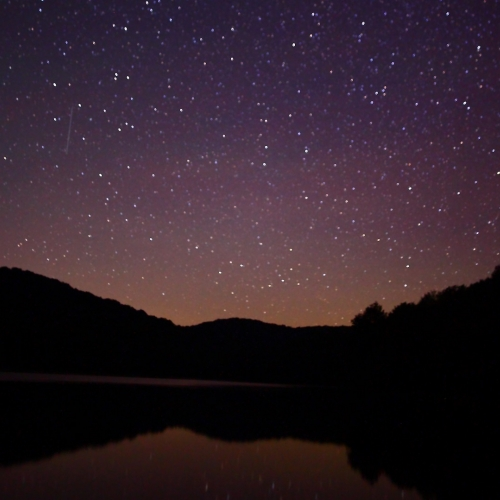 #bioPGH Blog: More Than Just The Night Sky