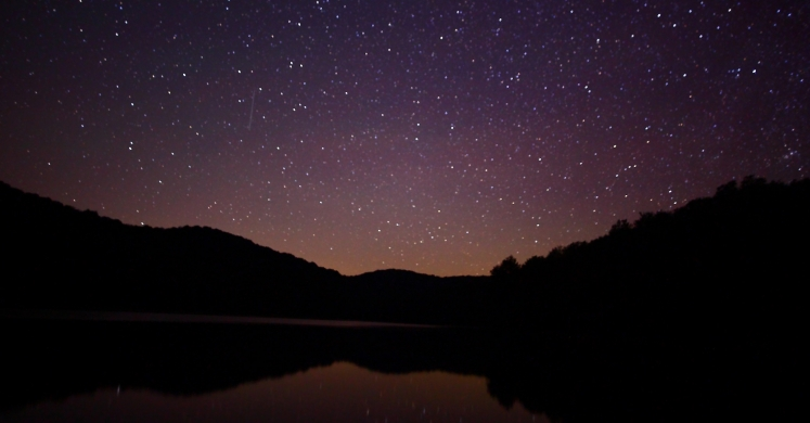 #bioPGH Blog: The Leonids Meteor Shower