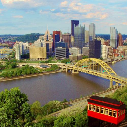 #bioPGH Blog: The Trees of Pittsburgh