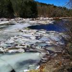 #bioPGH Blog: Icy Explorations