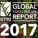 Policy Update: Snapshot of the Global Food Policy Report