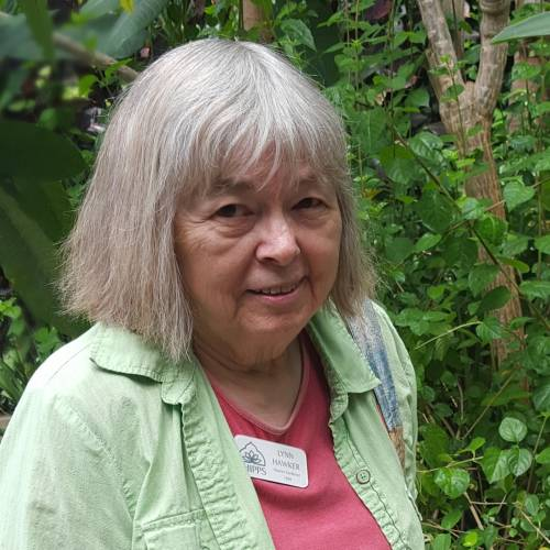 Volunteer Spotlight: Lynn Hawker