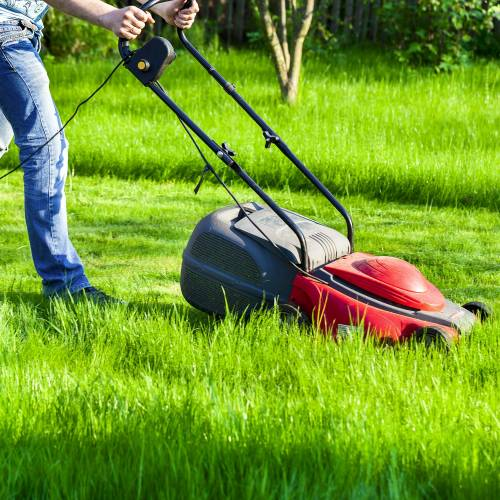 Phipps Continues Commitment to Sustainability With Innovative Lawn Care Practices