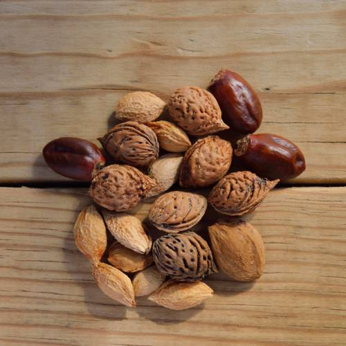 Ask Ginger: High Fat Content in Nuts