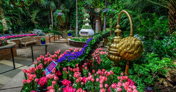 This Week at Phipps: April 2 – 8