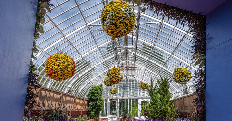 This Week at Phipps: May 27 – June 2