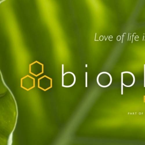 Join us for the August Biophilia Meeting with Robert S. Mulvihill of the National Aviary!