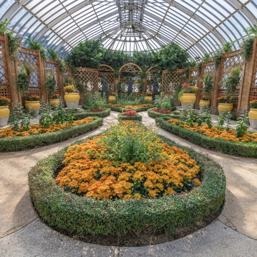 This Week at Phipps: Oct. 14 – 20