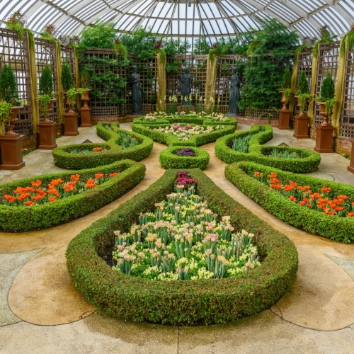 This Week at Phipps: April 4 – 10