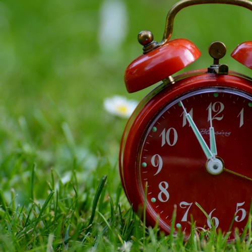 #bioPGH Blog: Nature's Sense of Timing