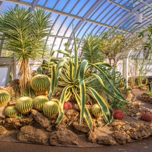 This Week at Phipps: Sept. 5 – 11