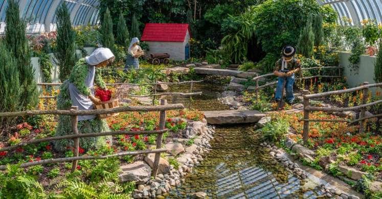 This Week at Phipps: June 3 – 9
