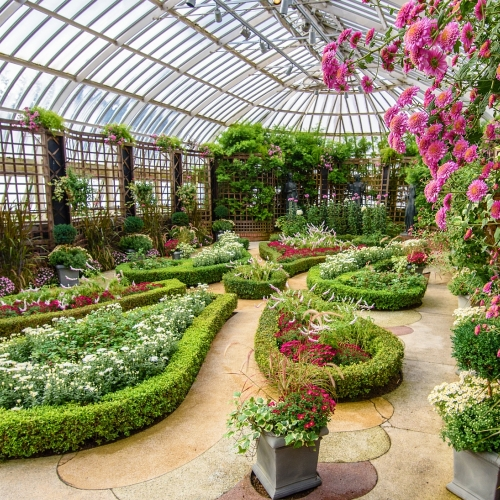 This Week at Phipps: Oct. 24 – 30
