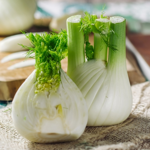 What We're Cooking With Now: Fennel