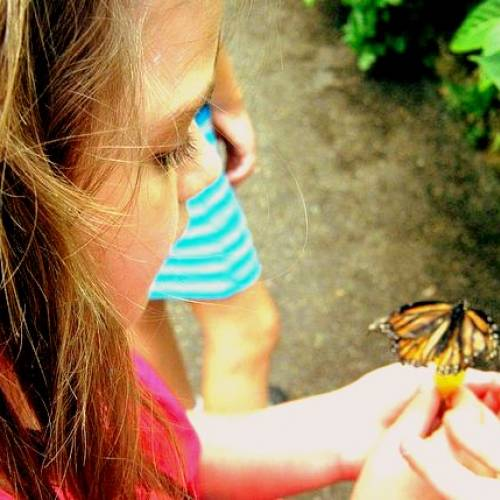 The Importance of Kindness: Teaching Empathy Through Interaction with Nature