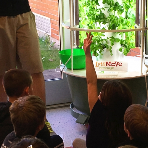 Health in Motion: Curtisville Primary Educational Garden