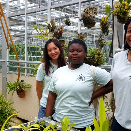 In with the Interns: Green Careers, Summer Camps and Homegrown
