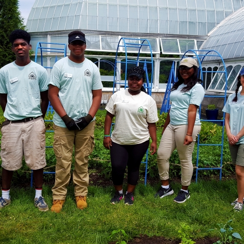 In with the Interns: Weeding, Planting, Cooking and More