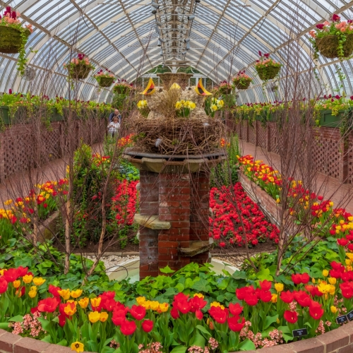 This Week at Phipps: April 1 – 7