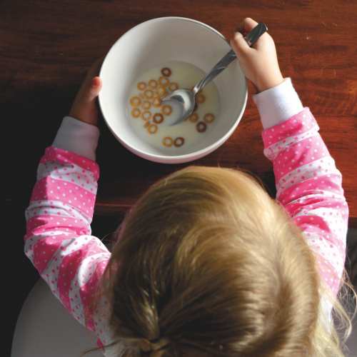 Toddler Nutrition Webinar