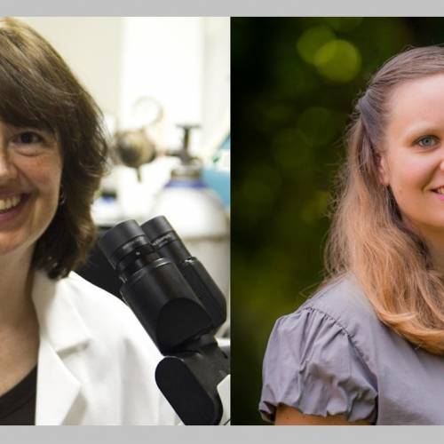 Meet a Scientist: Dr. Linda Peteanu and Vickie Bacon