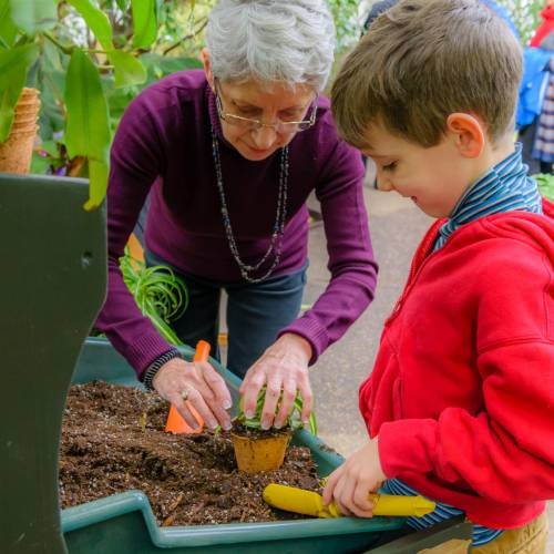 Health in Motion: Phipps Discovery Education