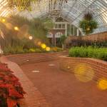 Phipps Regenerative Response to COVID-19 – March 14 to October 22, 2020