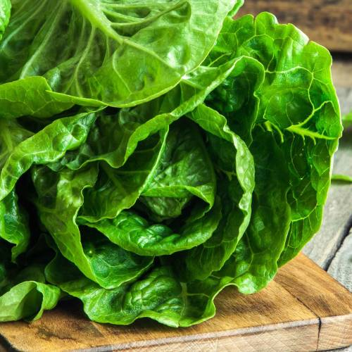 What We're Cooking With Now: Romaine Lettuce