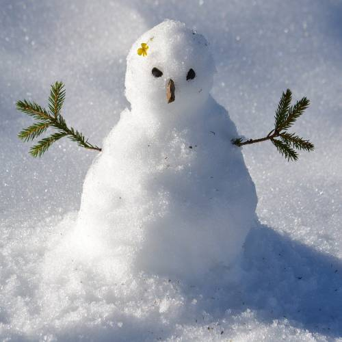 Do You Want to Build a Snowman? Ideas for Staying Active in Wintry Weather