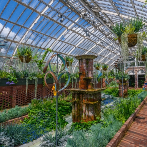 This Week at Phipps: July 30– August 5