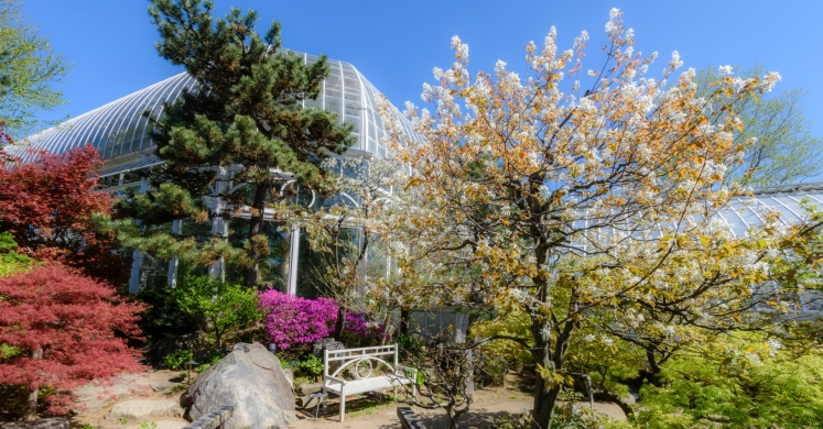 This Week at Phipps: April 24 – 30