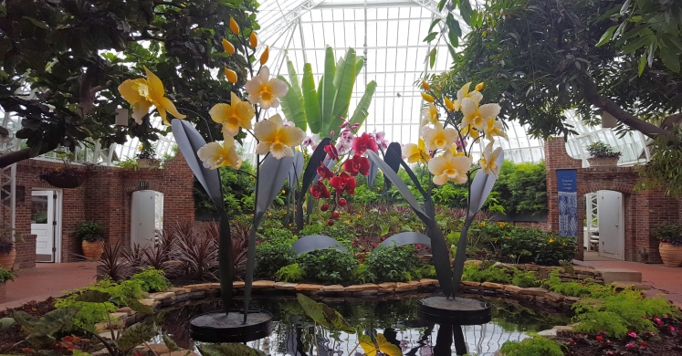 This Week at Phipps: May 1 – 7