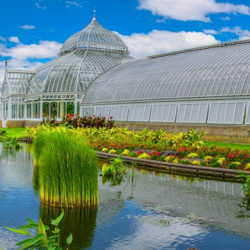 This Week at Phipps: June 26 – July 2