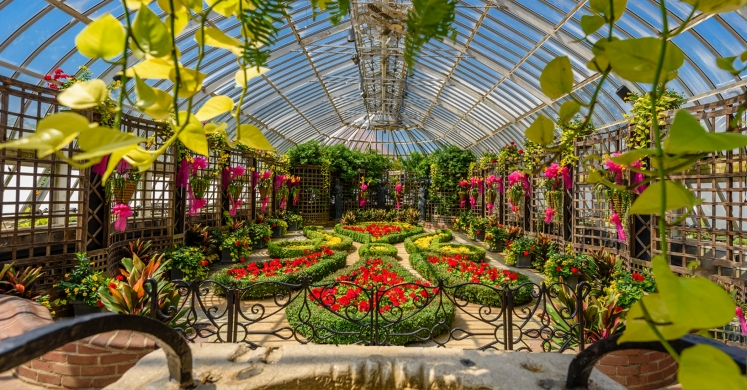 This Week at Phipps: Aug. 7 – 13