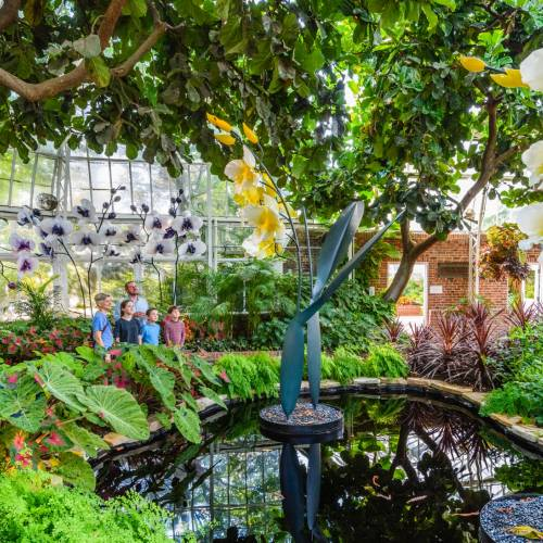 This Week at Phipps: Aug. 14 – 20