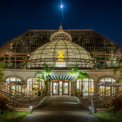 This Week at Phipps: Aug. 28 – Sept. 3