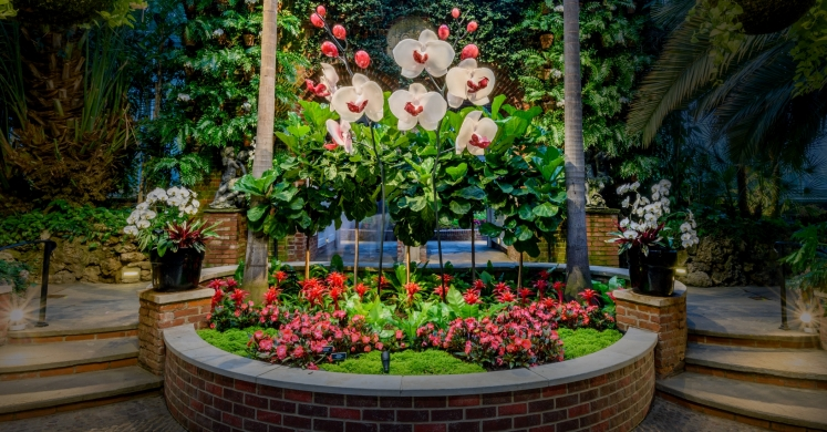 This Week at Phipps: Sept. 4 – 10