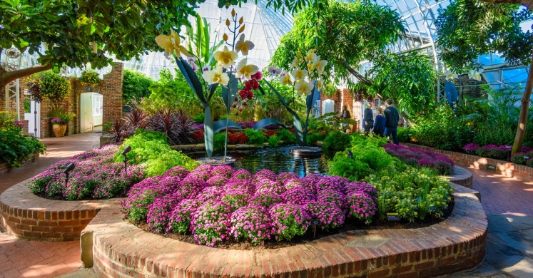 This Week at Phipps: Oct. 23 – 29