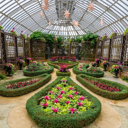 This Week at Phipps: Jan. 30 – Feb. 5