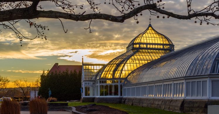 This Week at Phipps: Jan. 1 – 7