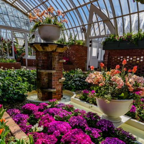 This Week at Phipps: March 12 – 18