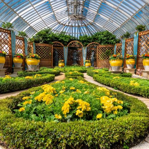 This Week at Phipps: May 13 – 19