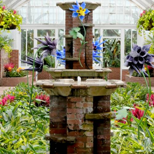 This Week at Phipps: May 29 – June 4