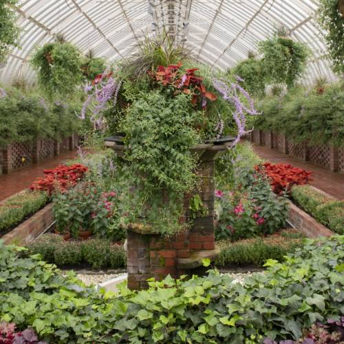 This Week at Phipps: Oct. 15 – 21