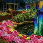 This Week at Phipps: Oct. 16 – 22