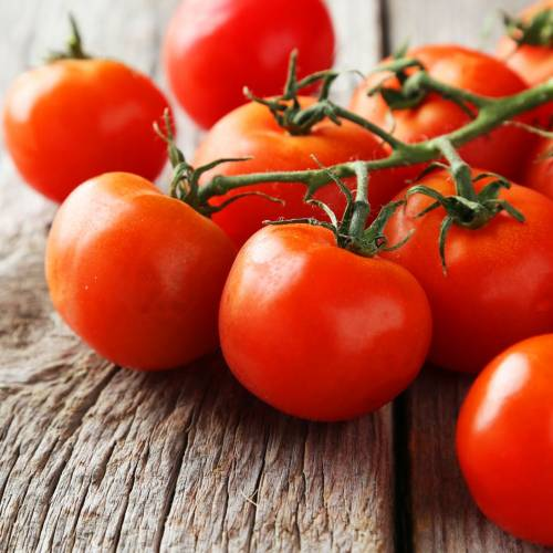 What We're Cooking With Now: Organic Tomatoes