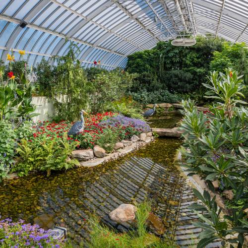This Week at Phipps: Aug. 31 – Sept. 6